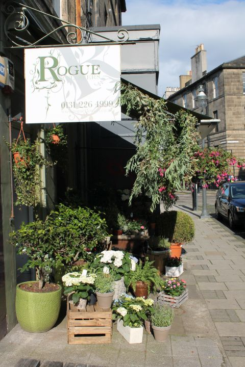 Rogue Flowers Shop